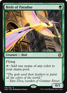 Birds of Paradise - Matt Plays Magic